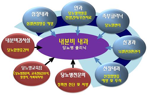 내분비 내과 당뇨병 클리닉에는 안과(당뇨망막병증 선별검사/우선치료), 족부클리닉(당뇨발관리), 신경과(뇌혈관질환관리), 신장내과(신장합병증 예방 및 투석), 당뇨병전문의(전확한 진단 및 처방), 당뇨병전문의(정확한 진단 및 처방), 당뇨병교육팀(당뇨병전문의, 교육전담간호사, 영양사, 사회복지사), 내분비검사실(당뇨합병증검사), 신장내과(심혈관합병증 예방)